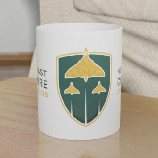 Large NECCC Jets Mug