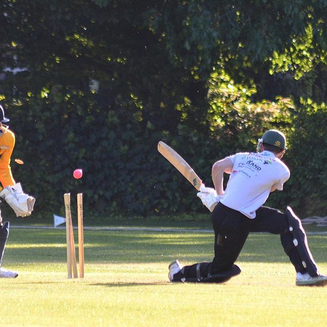 Haslington Deliver Knockout Blow to Jets T20 Hopes