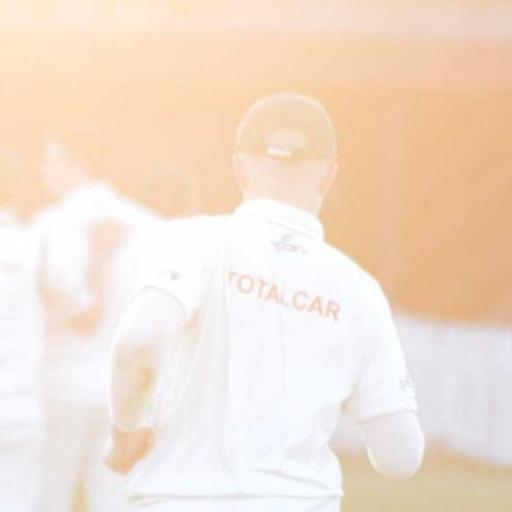 cricket-is-back